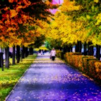 осень в парке :: Евгений Фролов