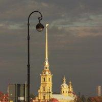 Город помнит :: Вера Моисеева