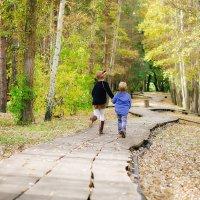 осень :: наталья Дубовая