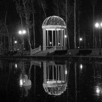 Вечерний пруд :: Александр Ведмидь