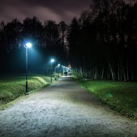 В парке :: Михаил Вандич