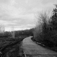 Дорога номер 2 :: Dmitriy Predybailo