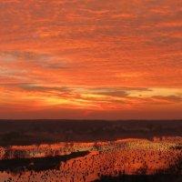 Закат на озере :: Сергей Титаренко