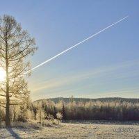 Морозное утро октября :: Сергей Шаврин