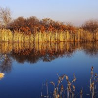 За синей гладью озера,за забором из травы,притаилась облепиха,приходи скорей,сорви... :: Александр Попов