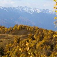 Shone, Сванети, октябрь. :: Roman