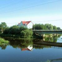 Отражение в воде :: Томчик Подольская