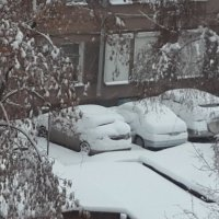 Вот и зима пришла :: Наталья Тимофеева