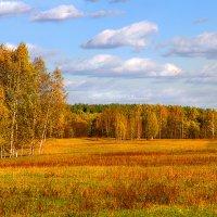 Осень :: Вячеслав Минаев