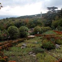 Никитский ботанический сад :: elena manas