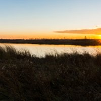 Пруд на закате! :: Alex Bush