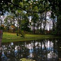Есть в графском парке старый пруд... :: Ольга П