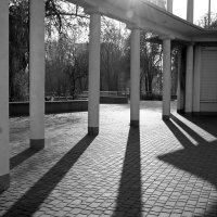 Геометрия теней :: Svetlana Kravchenko