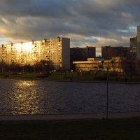 Ноябрьский вечер на городском пруду :: Андрей Лукьянов