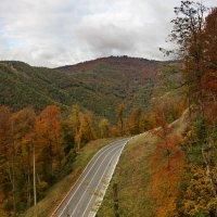 Осенняя дорога в горы :: Виолетта