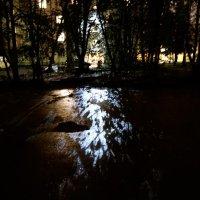 улица :: Дмитрий Потапов