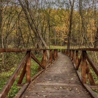 Осенняя зарисовка. Фото 12. :: Вячеслав Касаткин