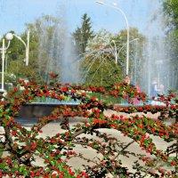 Центральный Фонтан. Измаил,Украина. :: Жанна Романова