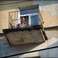балкон,смартфон,фараон... :: sv.kaschuk