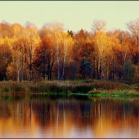 Осень в Клину :: Дмитрий