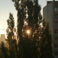 Солнце :: Николай Филоненко