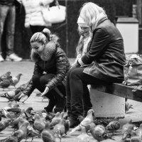 Фото с голубями :: Александр Степовой