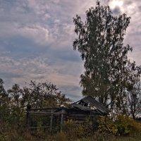Всё, что осталось от забытой деревни :: Владимир Новиков