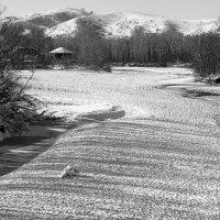 Зима близко :: Алексей Тырышкин