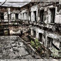 Усадьба Гребнево :: Photo GRAFF