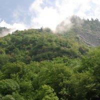 горы Абхазии :: pich