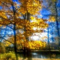 Осень в парке :: Юрий Тихонов