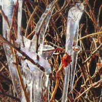 и лёд и пламень... :: ВладиМер