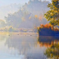 Многослойность осени :: Nina Streapan