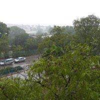 дождь! :: Mordechai Novenkii