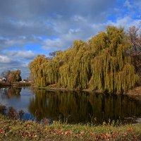 Есть в графском парке старый пруд... :: Александр Бойко