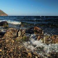 Байкал. Набежавшая волна всех забрызгала сполна... :: Александр Попов