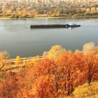 Золотая осень :: Владимир Андреевич Ульянов