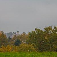 Осенняя зарисовка :: Waldemar .