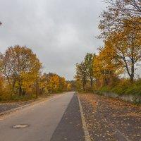 Городская осень :: Waldemar .