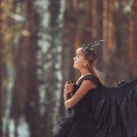 птица :: Константин Гусев