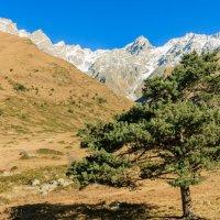 Верховья верхней Балкарии :: Сергей Руденко