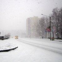 Снег кружится , летает , летает :: Мила Бовкун