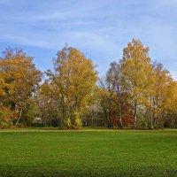 Последнее дыханье октября... :: Galina Dzubina