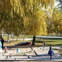 В осеннем парке :: Александр Скамо