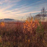 Вдоль устьянской дороги :: Валерий Талашов