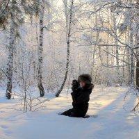 В зимнем лесу :: Светлана Медведева