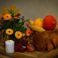 Осенние полевые цветы :: Viktor Schnell