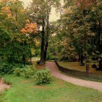 Осенний парк. :: Валентина Жукова