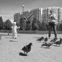 Голуби :: Алексей Окунеев