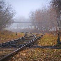 Туман :: Николай Фролов